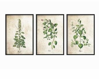 Botanical Prints - Herbs Print - Kitchen Prints - Rustic Decor - Home Decor - Vintage Prints - Kitchen - Wall Art - Prints - Gift for Mom