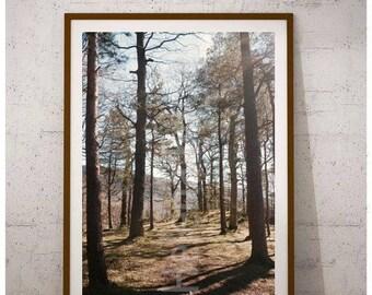 National Park Print, National Park Photos, Digital Print Download, Digital Art Print, Farmhouse Wall Art, Farmhouse Decor Kitchen