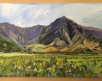 Kauai Mountains and Hanalei Kalo fields