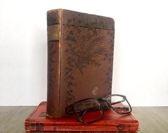 Vintage Book, Adam Bede by George Eliot, Vintage New Edition, Antique Book, Shelf Decor, Literature