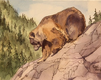 Grizzly Sliding Down the Rocks - An original bear painting done by Keith Thompson.
