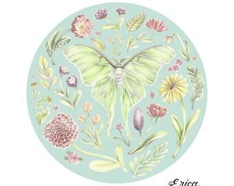 Luna Moth Garden 13 x 13 Illustrated Print