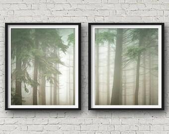 Scandinavian Print, Set Of 2, Nature Photography, Forest Print, Landscape Print, Wall Art, Posters, Prints Set, Tree Print, Nature Print,153