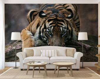 Prowling Tiger Wall Mural, Self Adhesive Photo Mural, Peel U0026 Stick Wall  Decor, Part 50
