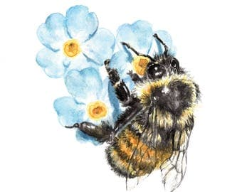 Honeybee Bee Forget Me Not flowers Watercolor Print