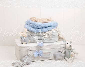 Newborn Digital Backdrop (suitcases/blue)