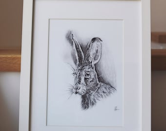 Henry the Hare - A4 print of original  pencil drawing.