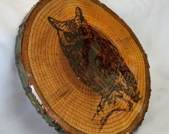 Gorgeous Glossy Rustic Wood Log Slice Owl Carving Engraving Wall Hanging Display