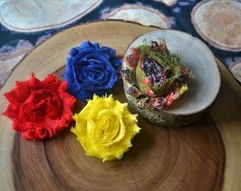 Primary shabby flower clip set