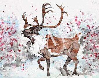 Caribou Water Color Print