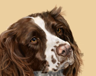 Canvas Print - Springer Spaniel