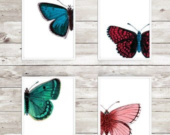 Set of 4 8x10 Butterfly Printables