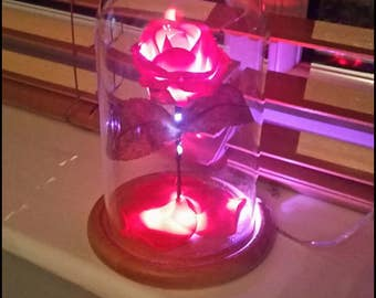 Beauty and the Beast bell jar