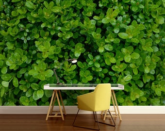 leaf WALL MURAL, leaves wall mural, green wallpaper, forest mural, green wall mural, vinly wall mural, leaf wallpaper, leaf wall decal