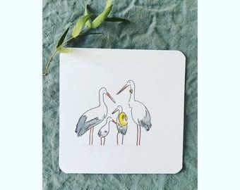 Family of storks