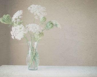 Queen Anne's Lace soft, still life flowers, queen anne's lace bouquet, neutral color print, home decor wall print, unique gifts,