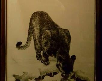 Cougar Art