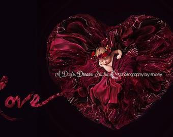 Newborn Digital Background / Valentine's Day / Heart