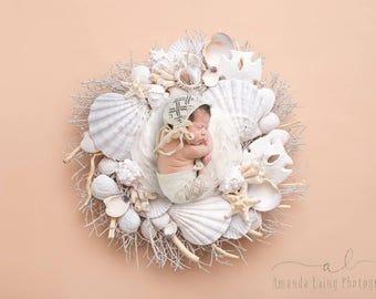 Beach Seashell Wreath Newborn Digital Backdrop