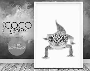lizard wall art,  lizard decor, black and white, monochrome print, lizard print art, lizard photography, birthday gift reptile, lizard decor