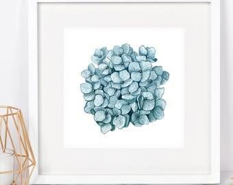 Blue Hydrangea Watercolor Square PRINT - hydrangea art, botanical print, botanical art, botanical art prints