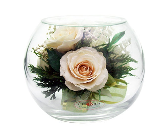 Ivory roses in a vase large round
