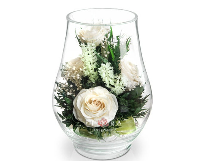 Ivory roses in a vase medium rose Bud