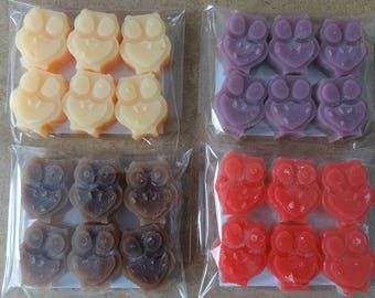 Wax Melts, Owls 6 per pack - Handmade, Highly Scented, Various Colours
