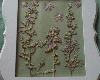 Framed, dried wild flowers.  Marshmallows.