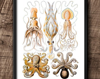 Octopuses · Instant Download · Vintage · Sea ·  Collage · Wall · Printable · Digital File #78