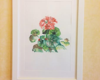 Geraniums in Earth-drawing on cardboard in mixed media on cardboard-acrylic painting and Watercolor-Painting with white wooden frame