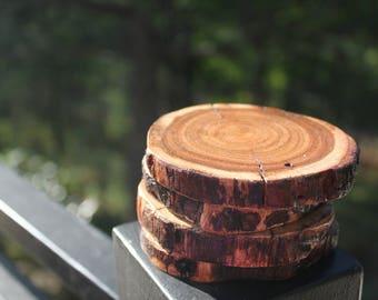 Wooden Coasters - Wild Wattle