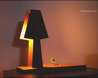 A good book. Different wooden light