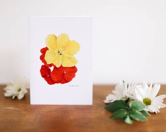 Thank You Hibiscus/Impatiens Greeting Card and Note Card