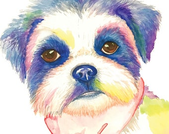 Shih Tzu Original Watercolor Print