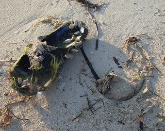 Long Key State Park, Flip Flop on the Sand.