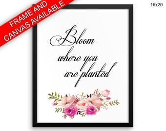Bloom Where You Are Planted Prints  Bloom Where You Are Planted Canvas Wall Art Bloom Where You Are Planted Framed Print Bloom Where You Are