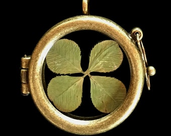 Real 4-Leafed Clover Pendant