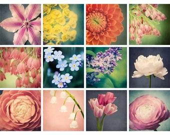 Flower Photography Print Set, 5x5 Prints, Colorful Wall Art, Flower Art Prints, Affordable Art Collection, Mini Portfolio