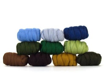 ON SALE Country Garden Merino Variety Pack - 10 colors - 25 grams each color = 250 grams 8.8 oz total to Spin, Felt, Card, Fiber Art, Create