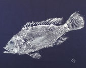 ORIGINAL Black Sea Bass best GYOTAKU fish rubbing Salt Water Game Fish wall art on Navy Cloth by Barry Singer