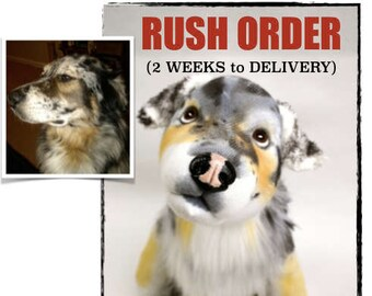 Custom Stuffed Animal Pet - Dog Memorial - Cat Memorial - Made to Order Pet Replica- Pet Loss Gift - RUSH Delivery 2 Weeks