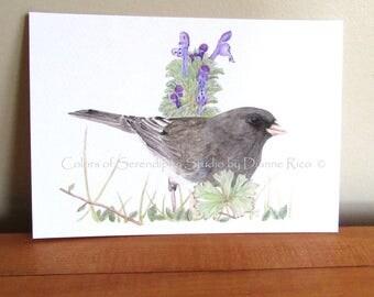 Spring Junco - 5x7 or 8x10 Bird Giclee Watercolor Print