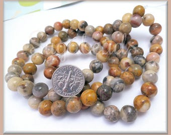 1 Strand Crazy Lace Agate Gemstone Beads 8mm - Warm golds, reds, yellows Agate Beads
