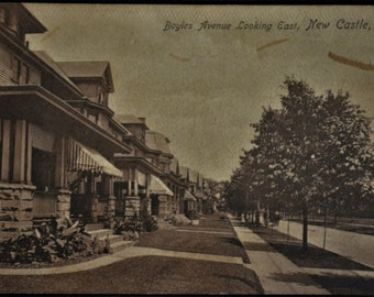 Postcard Boyles Avenue Looking East New Castle PA Pennsylvania Tree Lined Boulevard Antique 1913
