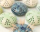 SALE sea Urchin toothpick holder