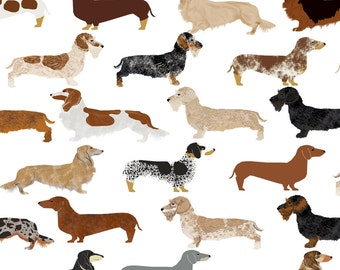 Dachshunds Fabric - Smooth Wire Haired Long Haired Dachshunds Dogs Pets By Petfriendly - Cotton Fabric By The Yard With Spoonflower