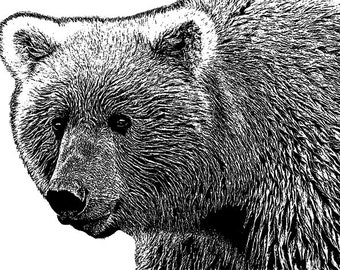 Grizzly Bear Stencil Etsy
