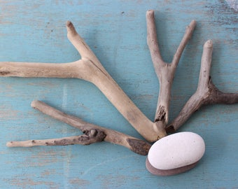 Set of 4 Natural Y , Wishbone Driftwood Pieces , coastal crafts , Drift Wood Craft Supply  DY4