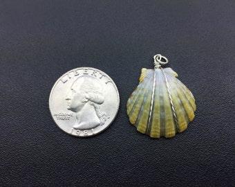 0019 Sunrise Shells Hawaii Pendant